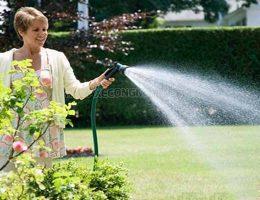 Chăm sóc vườn cây với loại máy rửa xe gia đình nào tốt nhât?